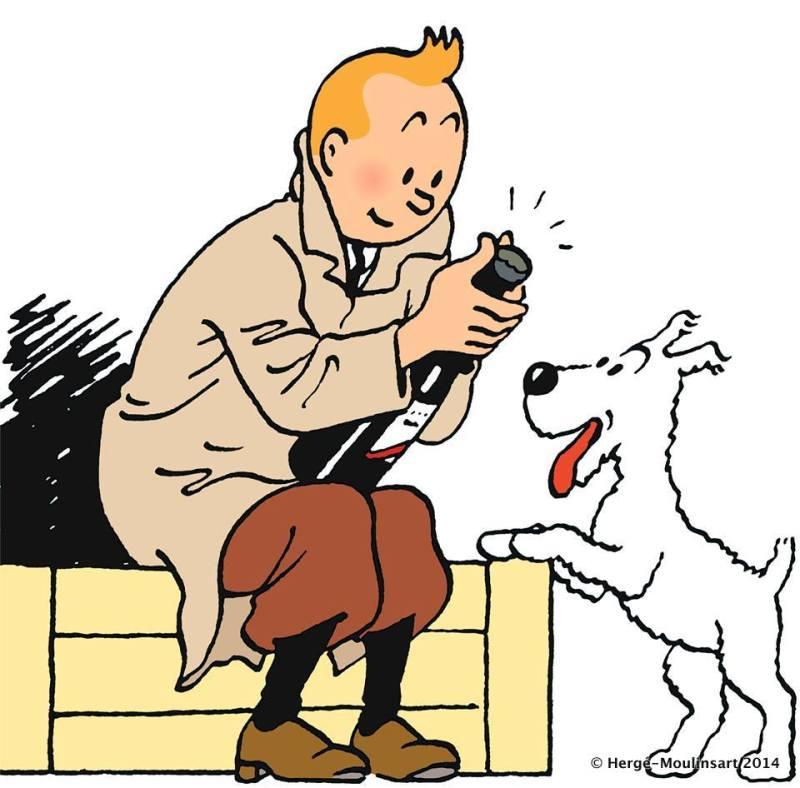 Expo Tintin Musée en Herbe