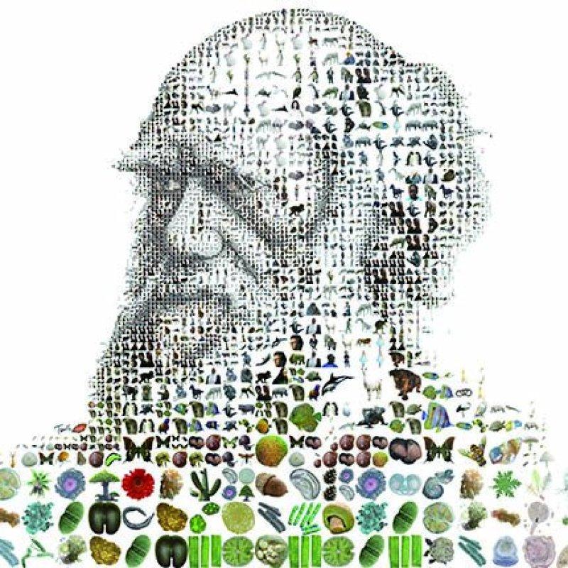Darwin, l'original la théorie de l'évolution